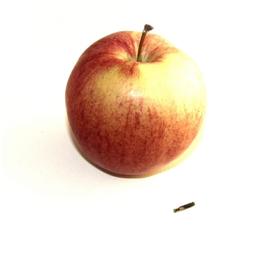 NFC Implantat neben Apfel